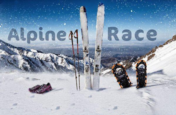 Результаты AlpineRace 2017