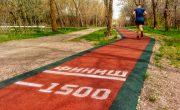 Беговые дорожки Алматы